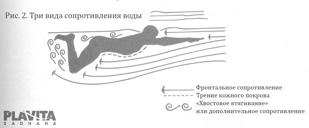figura2copy